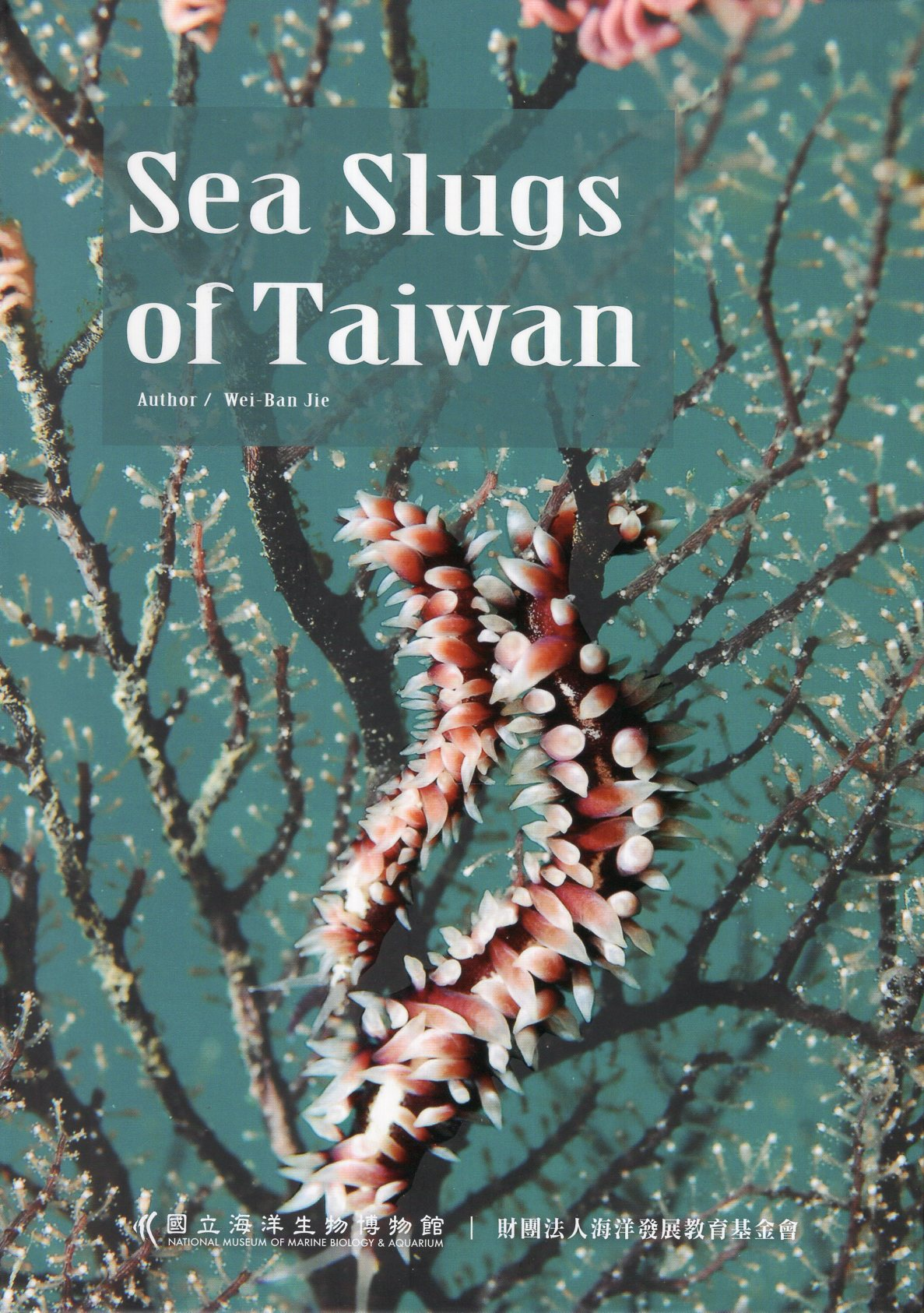 Sea Slugs of Taiwan(hardcover)