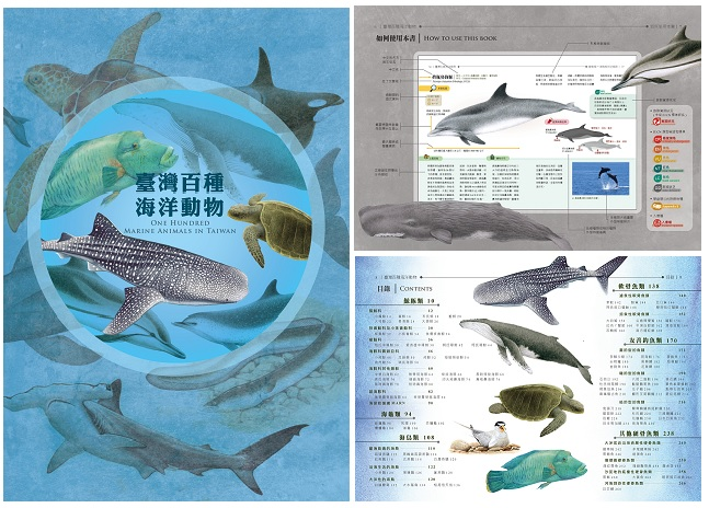 臺灣百種海洋動物ONE HUNDRED MARINE ANIMALS IN TAIWAN(精裝)