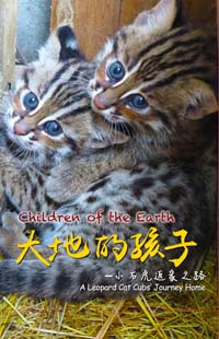 Children of the Earth: A Leopard Cat Cub
